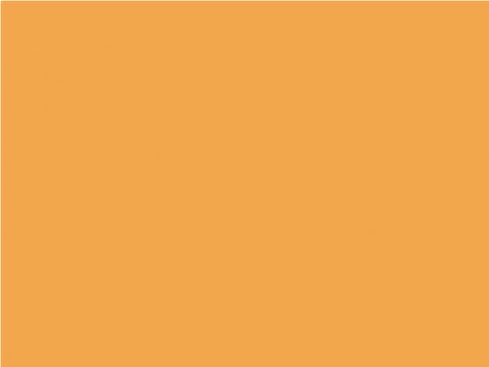 サンフラワーオレンジ
